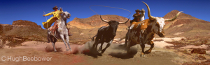 Big Bend Country | Beebower Productions