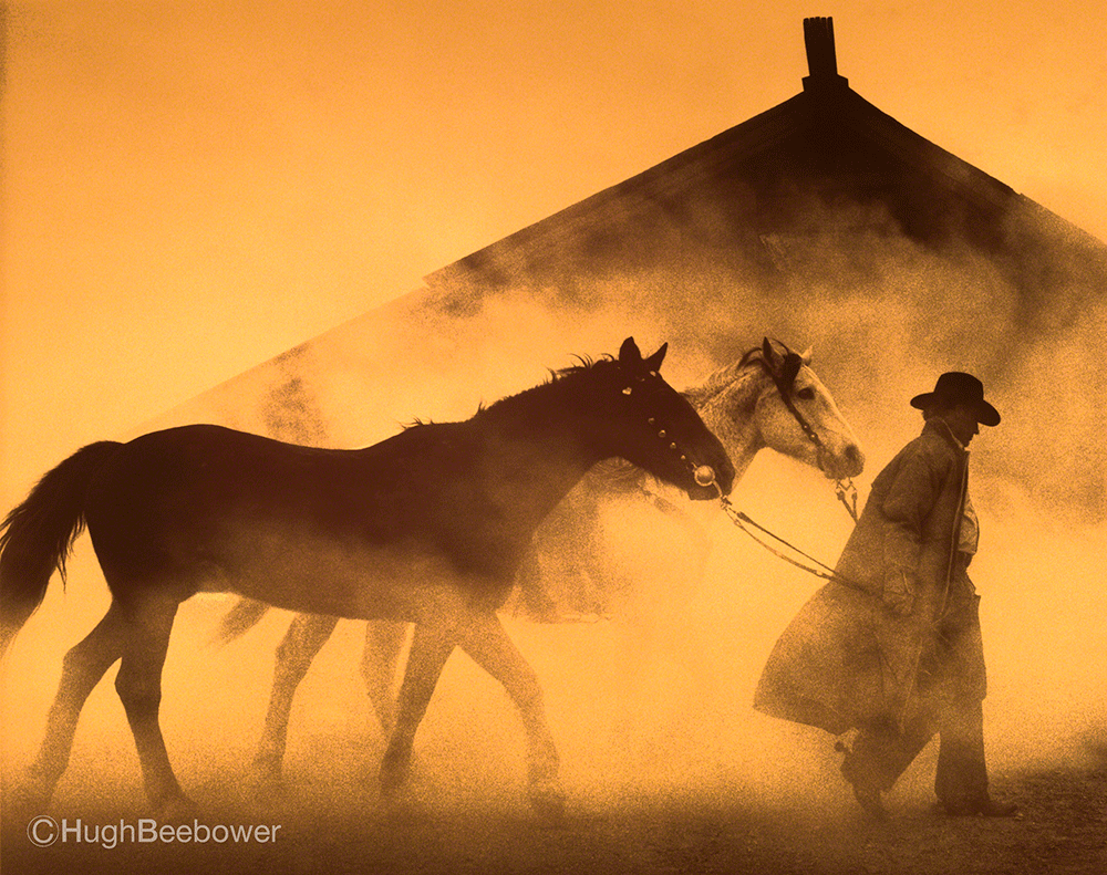 Cowboy with Horses in the Dust | Beebower Productions