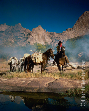 Mendosa Canyon Packhorses | Beebower Productions