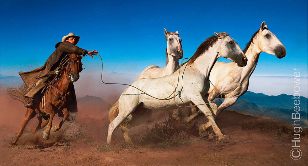 South Rim Horse Chase   Beebower Productions