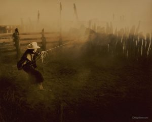 Cowboy, Horses, Rope | Beebower Productions, Inc.