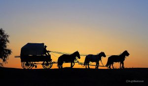 Heading Home | Beebower Productions, Inc.