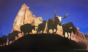 Red Rock Longhorns | Beebower Productions