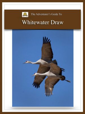Adventure Guide Whitewater Draw Cover | Beebower Productions